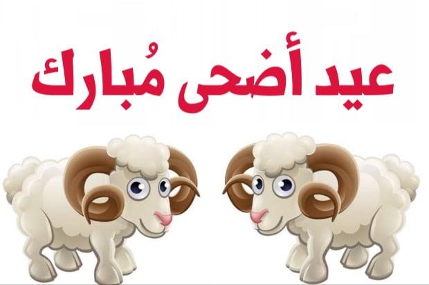 اجمل معايدات عيد الاضحى المبارك 2020 معايدات عيد الاضحى بالصور