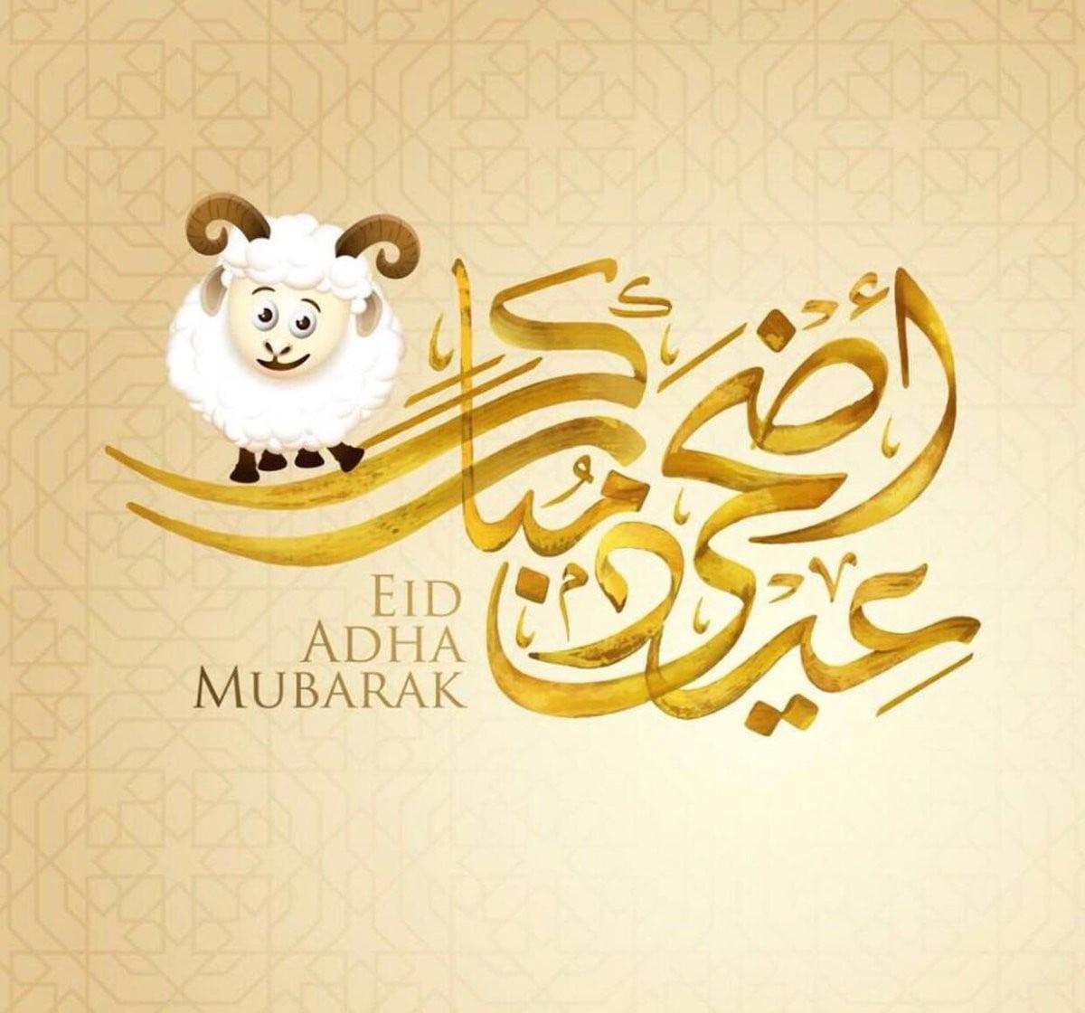 اجمل صور معايدة عيد الاضحى 2020 رسائل معايدة عيد الاضحى المبارك