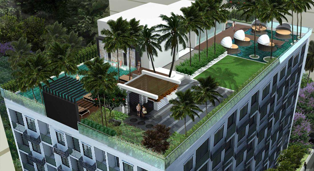 أفضل طرق زراعة اسطح المنازل بالتفصيل وبالصور